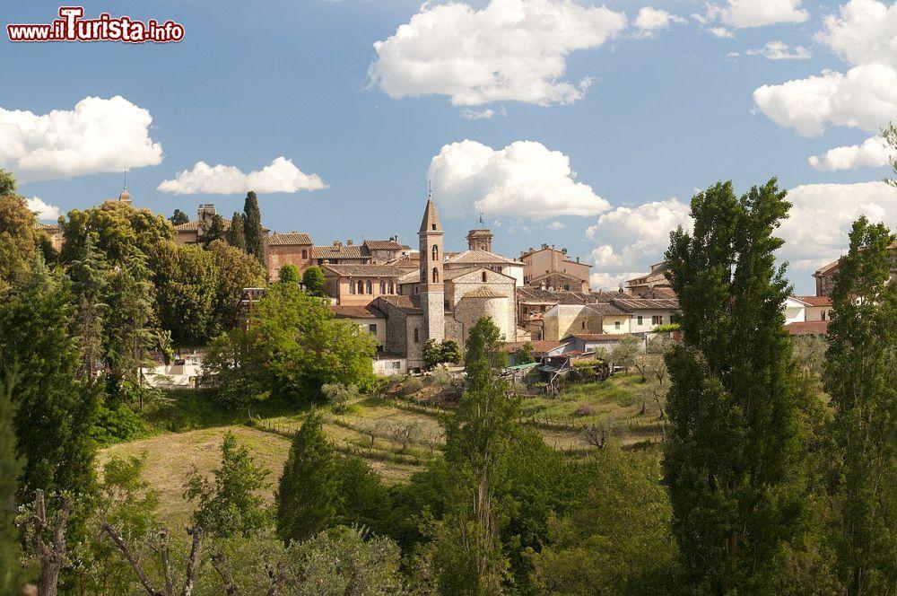 Le foto di cosa vedere e visitare a Castelnuovo Berardenga