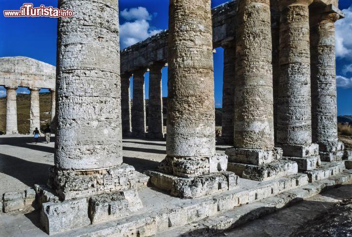 Le colonne doriche del tempio greco di segesta foto for Aggiornare le colonne del portico