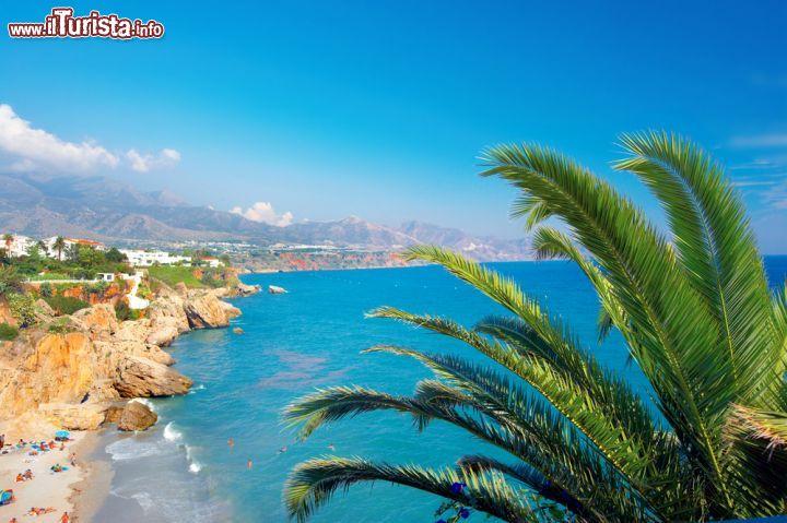 Le foto di cosa vedere e visitare a Marbella