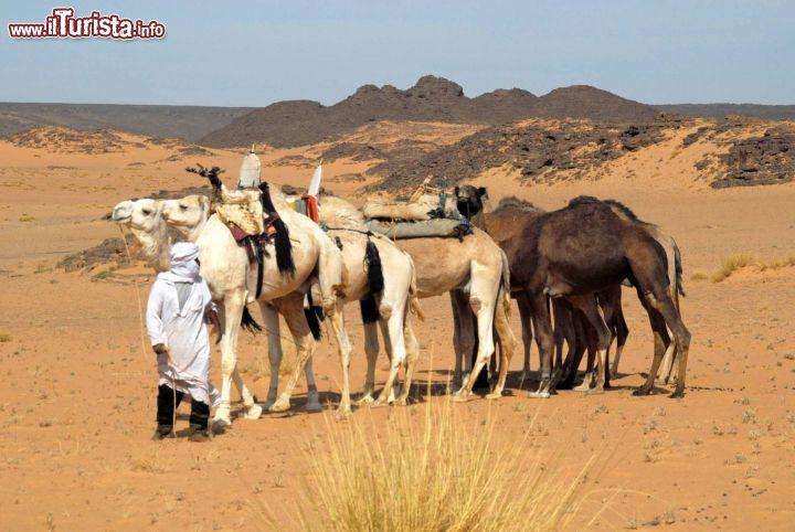 Le foto di cosa vedere e visitare a Algeria