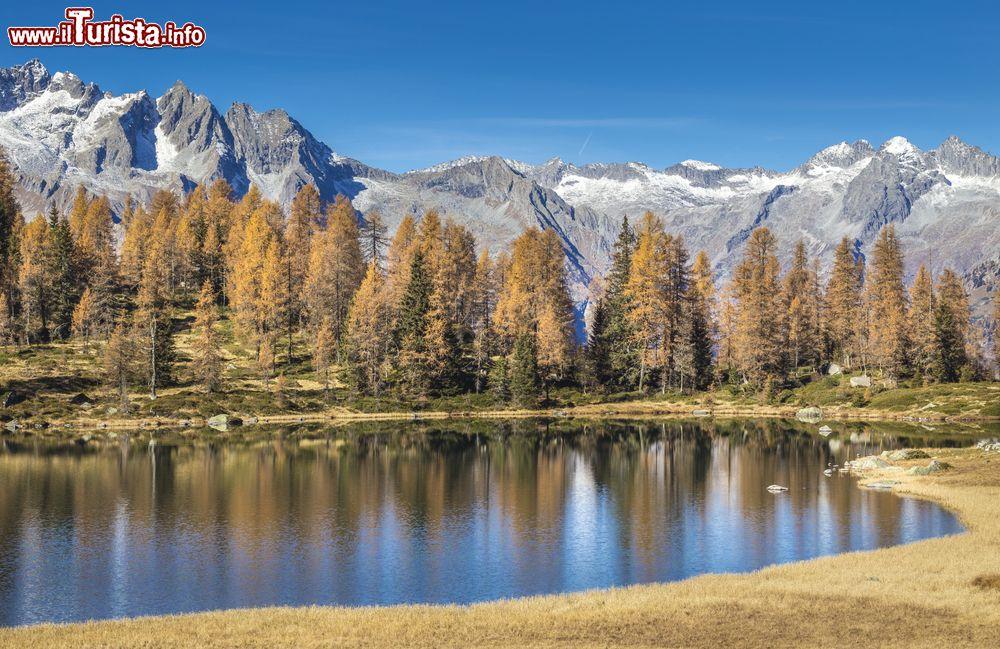 Le foto di cosa vedere e visitare a Caderzone Terme