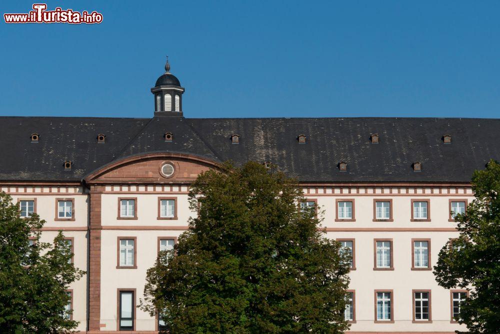 Le foto di cosa vedere e visitare a Haguenau
