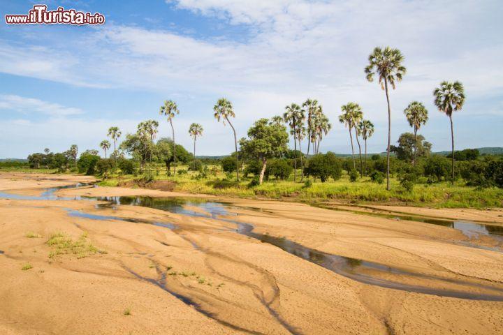 Fiume in secca nel parco nazionale di ruaha che foto - Letto di un fiume in secca ...