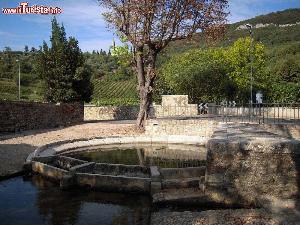 Le foto di cosa vedere e visitare a Castegnero