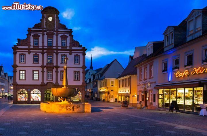 Le foto di cosa vedere e visitare a Speyer