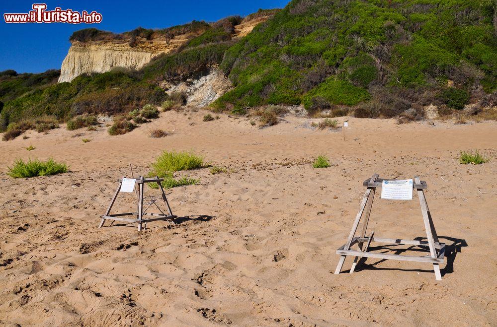 Gerakas la spiaggia delle tartarughe le zone foto zante for Lago tartarughe