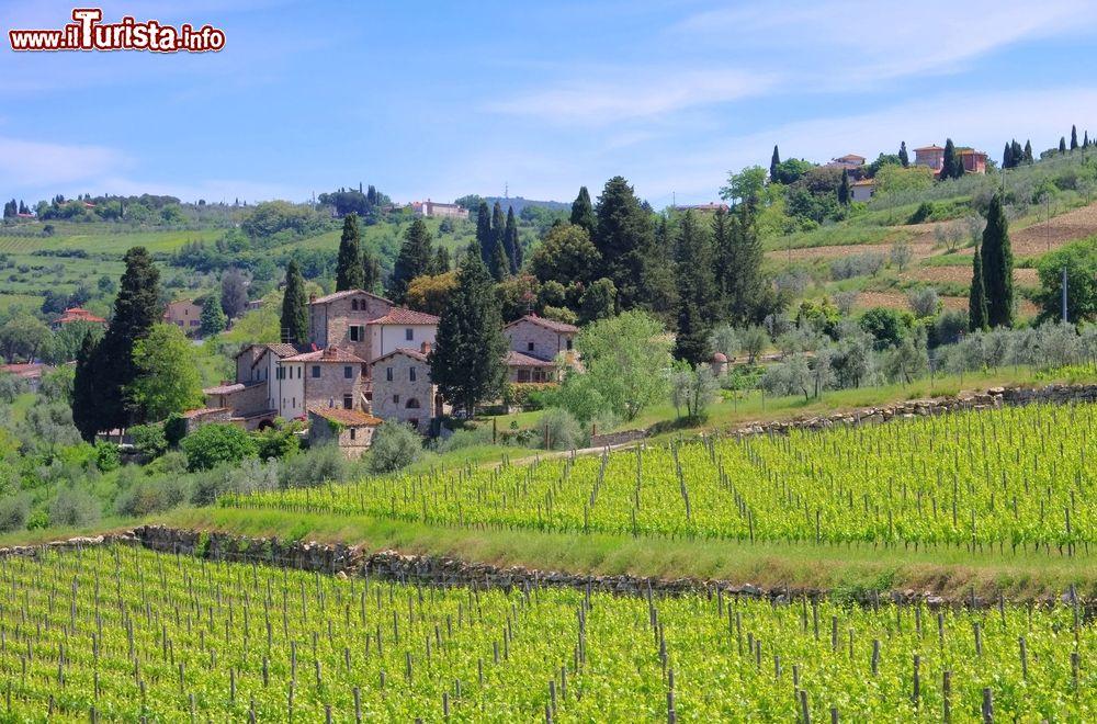 Le foto di cosa vedere e visitare a Panzano in Chianti
