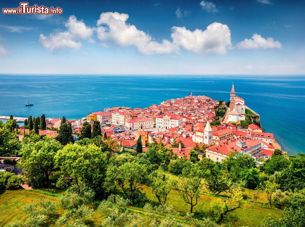 Le foto di cosa vedere e visitare a Slovenia