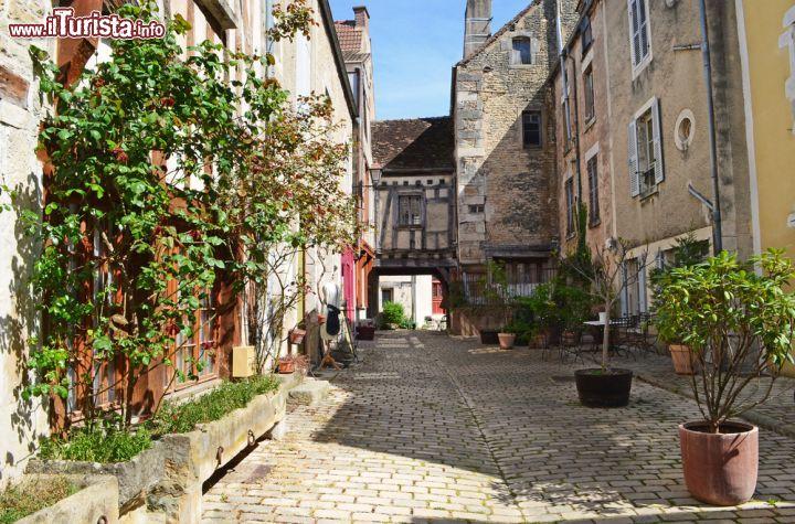 Le foto di cosa vedere e visitare a Noyers-sur-Serein