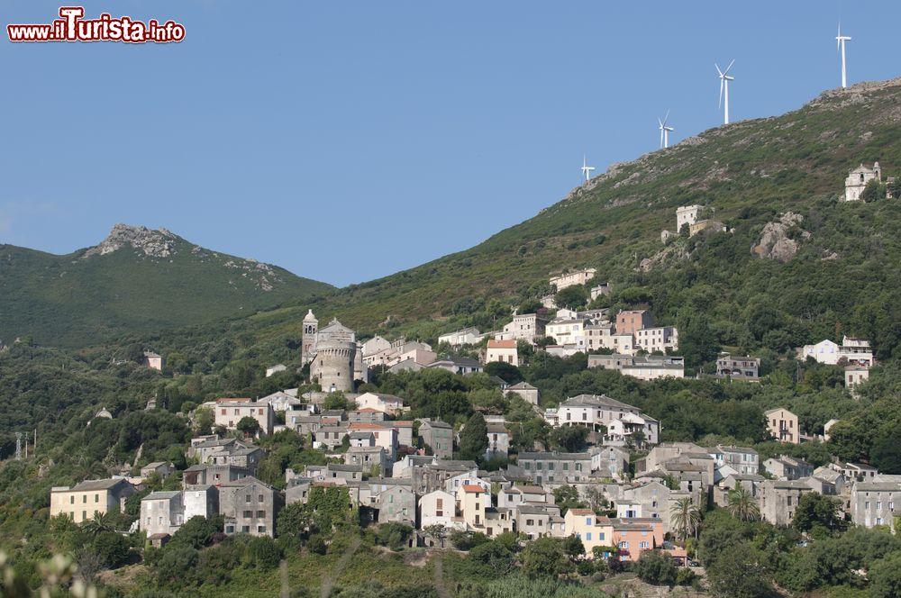Le foto di cosa vedere e visitare a Rogliano