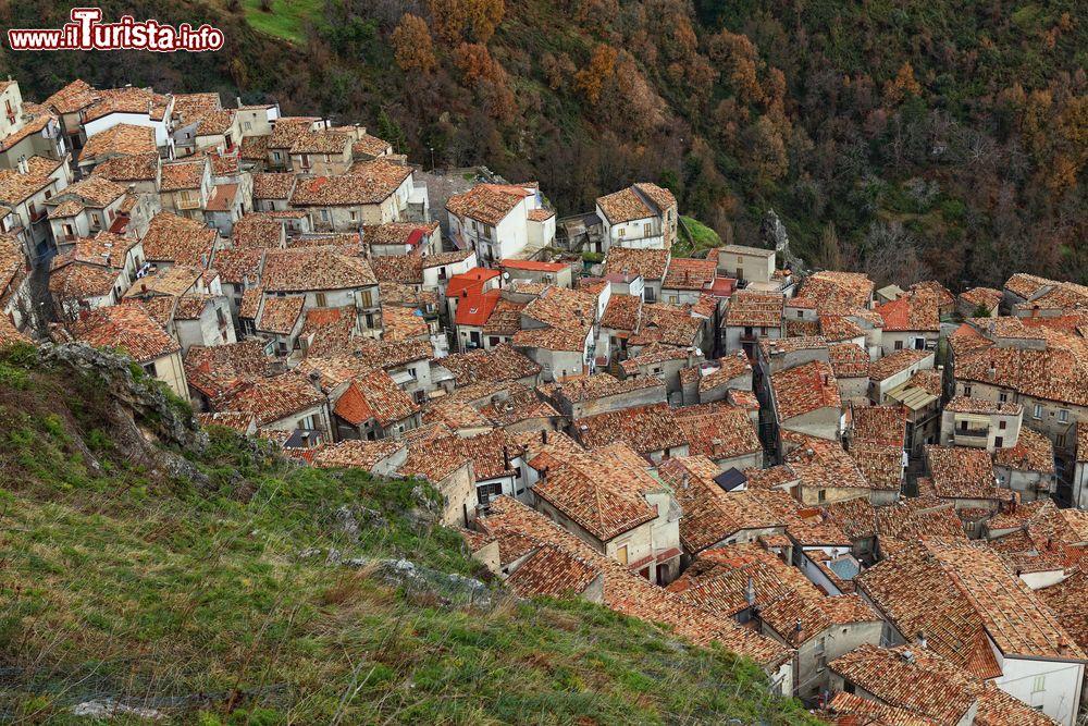 Le foto di cosa vedere e visitare a San Donato di Ninea