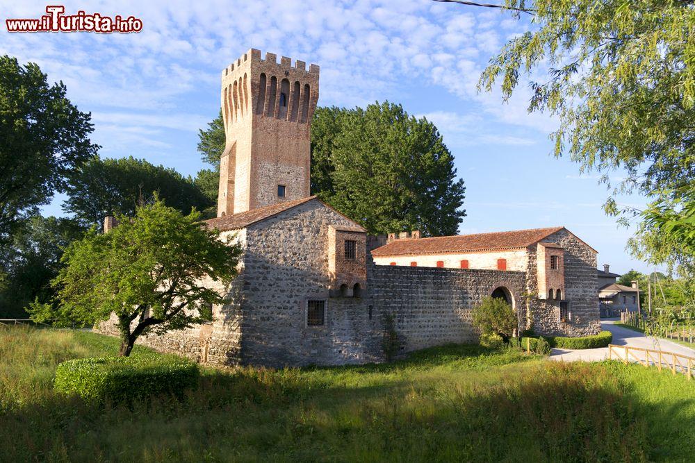 Le foto di cosa vedere e visitare a Cervarese Santa Croce