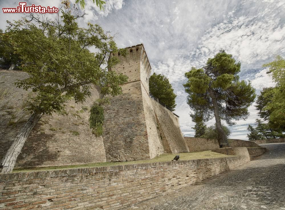 Le foto di cosa vedere e visitare a Montegridolfo