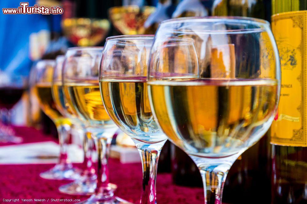 Forlì Wine Festival – Vini dell'Emilia Romagna e d'Italia Forlì