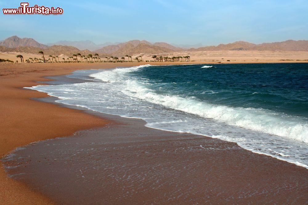 Le foto di cosa vedere e visitare a Nabq Bay