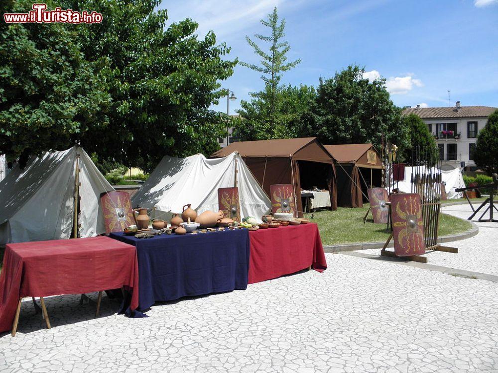 Mercato della Centuriazione Romana Villadose