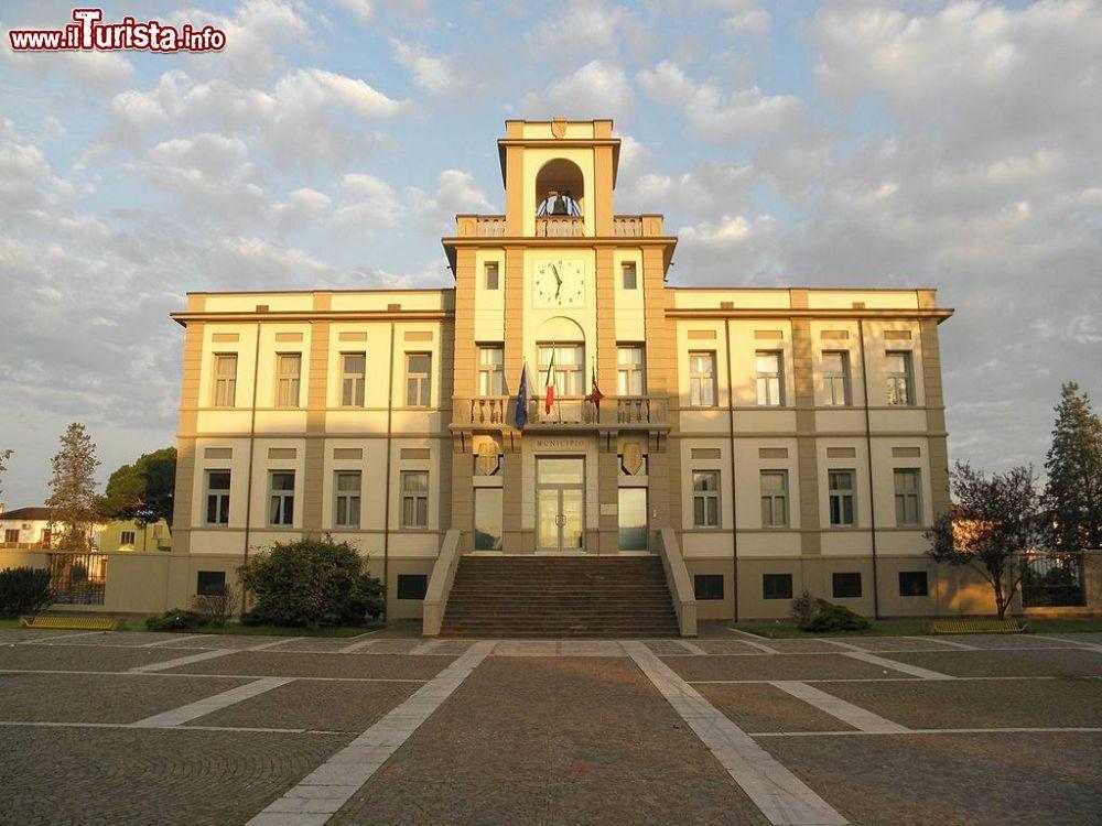 Le foto di cosa vedere e visitare a Porto Viro