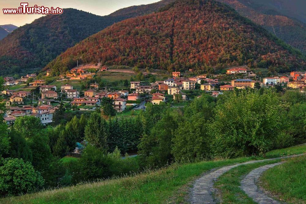 Le foto di cosa vedere e visitare a Viadanica