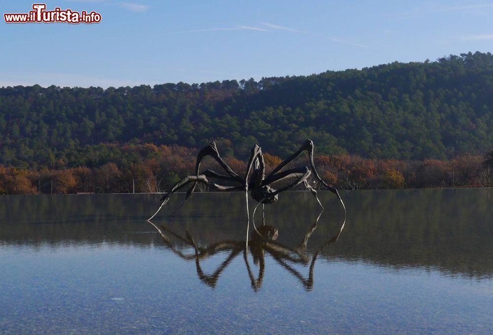 Le foto di cosa vedere e visitare a Le Puy-Sainte-Reparade