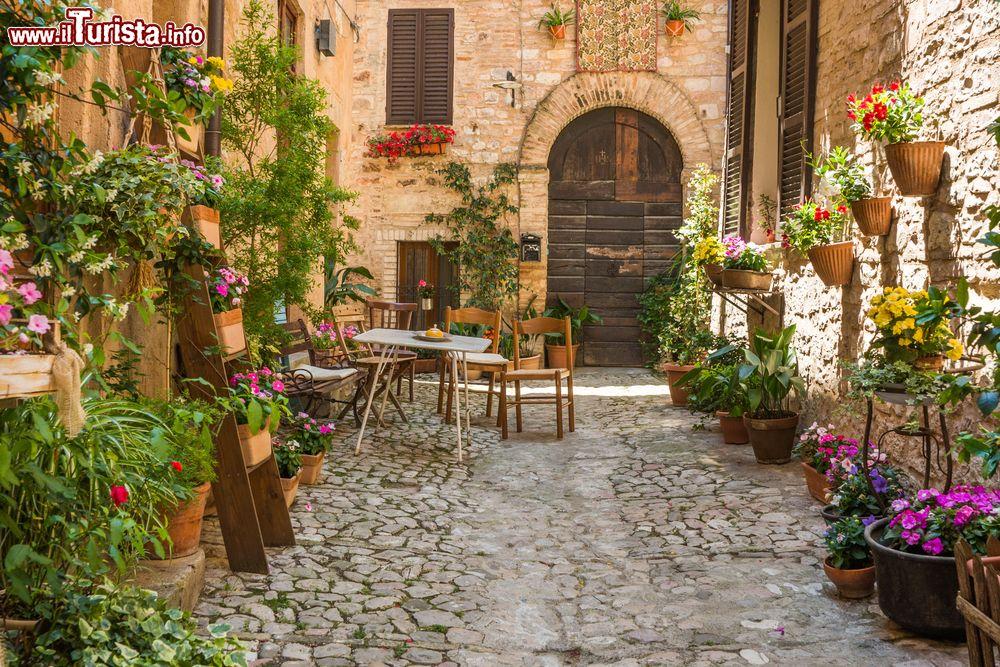 Ingresso romantico in una casa di spello con foto spello for Foto case con giardino