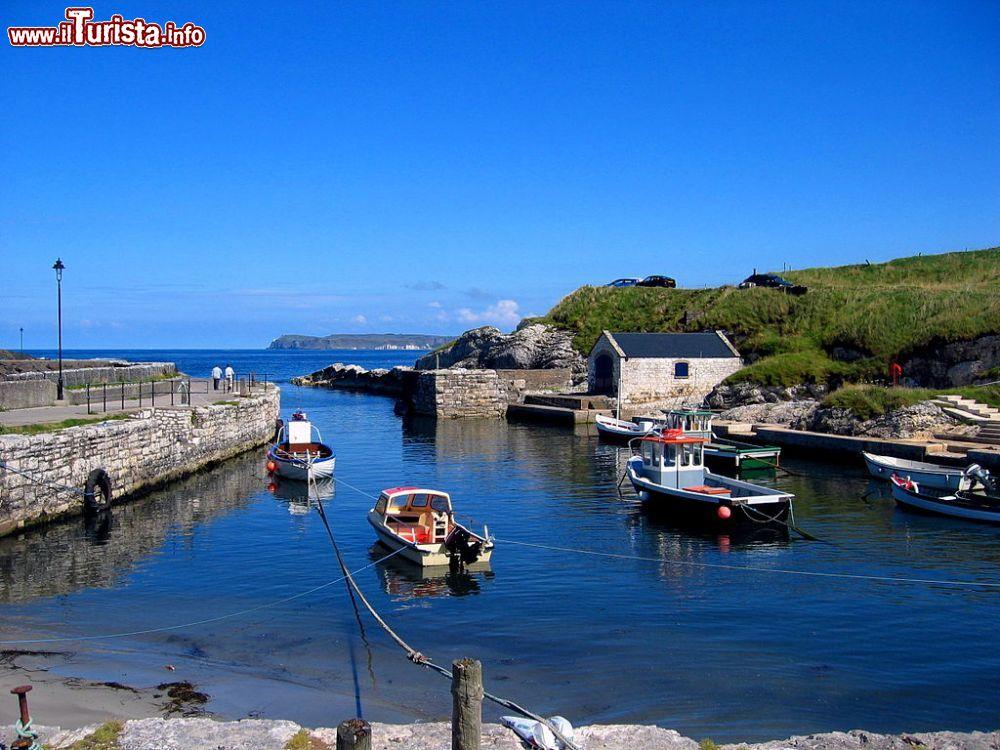 Le foto di cosa vedere e visitare a Rathlin Island