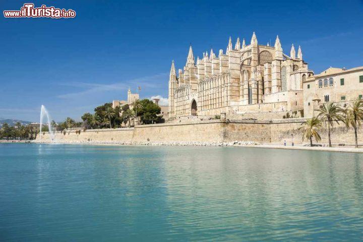 Le foto di cosa vedere e visitare a Palma di Maiorca