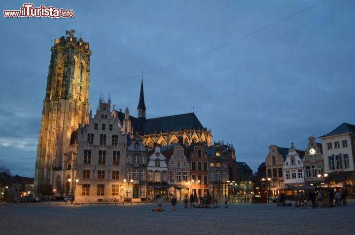 Le foto di cosa vedere e visitare a Mechelen
