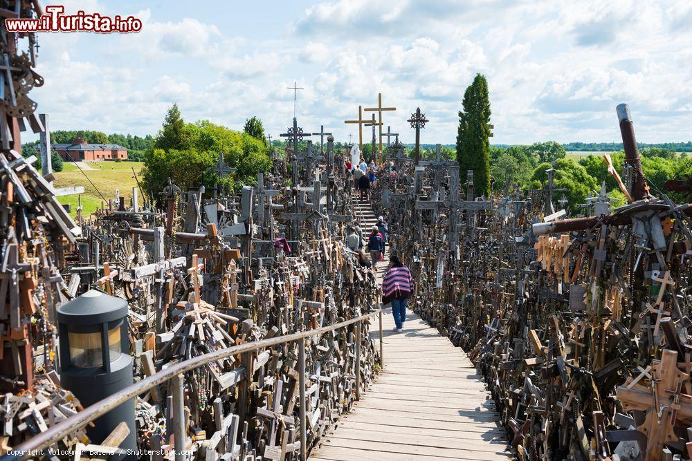 Le foto di cosa vedere e visitare a Siauliai