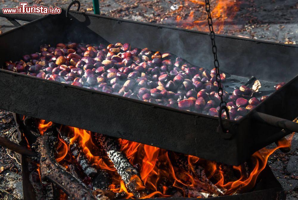 La Festa di San Martino Villavallelonga