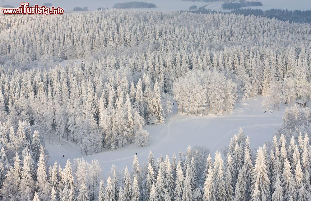 Le foto di cosa vedere e visitare a Kuopio