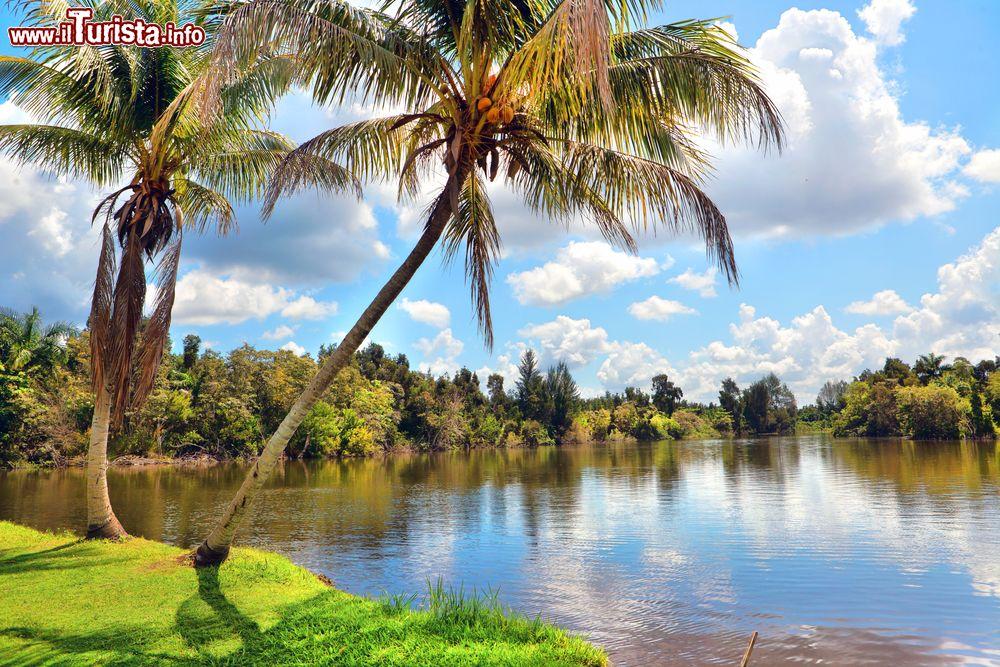 Le foto di cosa vedere e visitare a Guamá