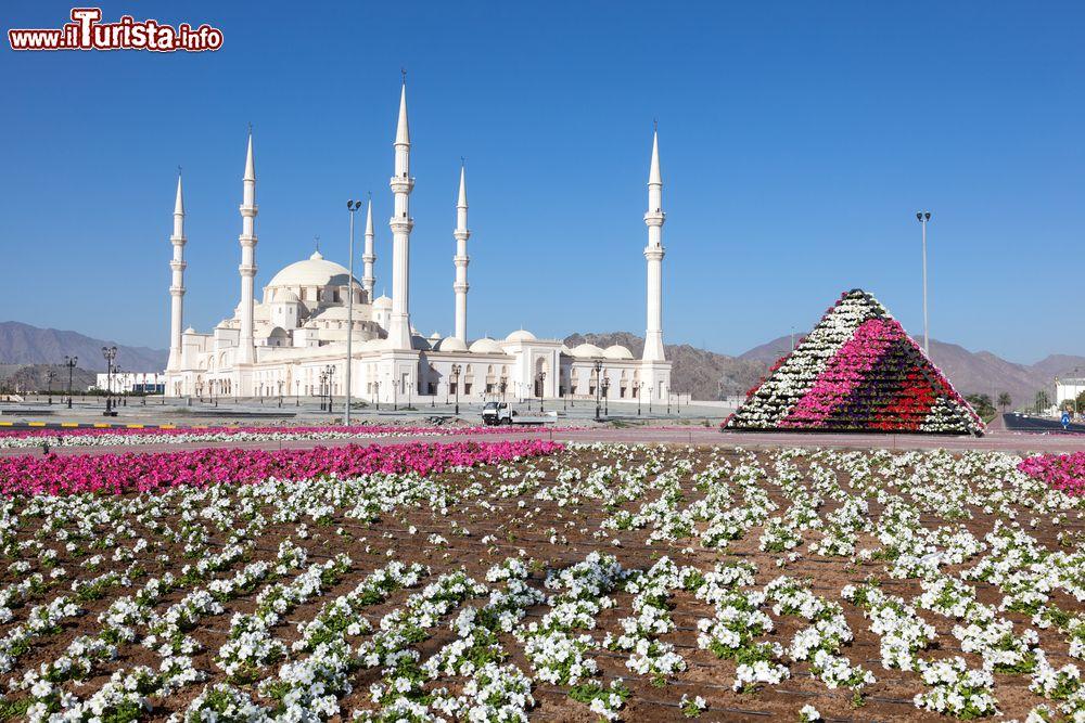 Le foto di cosa vedere e visitare a Fujairah