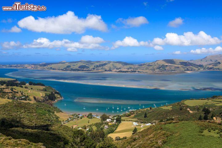 Le foto di cosa vedere e visitare a Dunedin