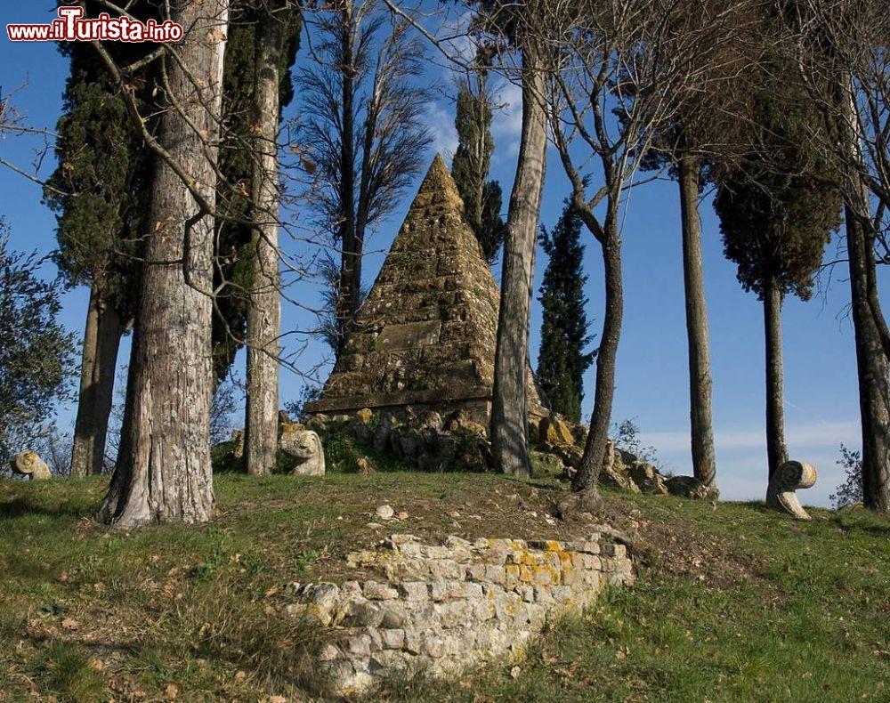 Le foto di cosa vedere e visitare a Montaperti