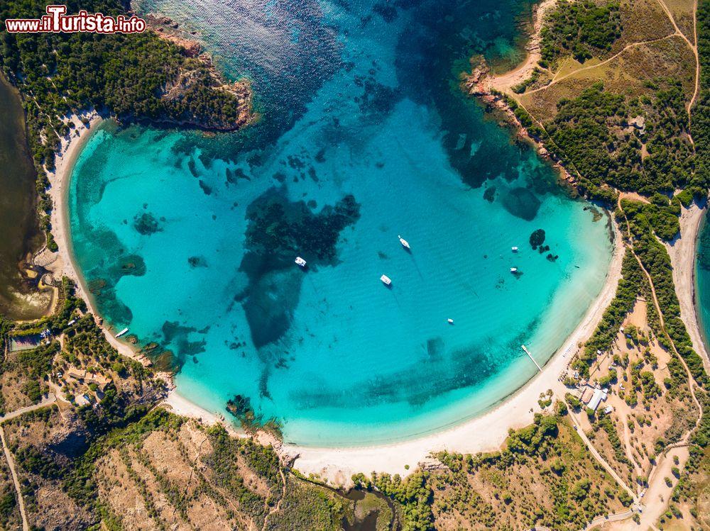 Le foto di cosa vedere e visitare a Corsica