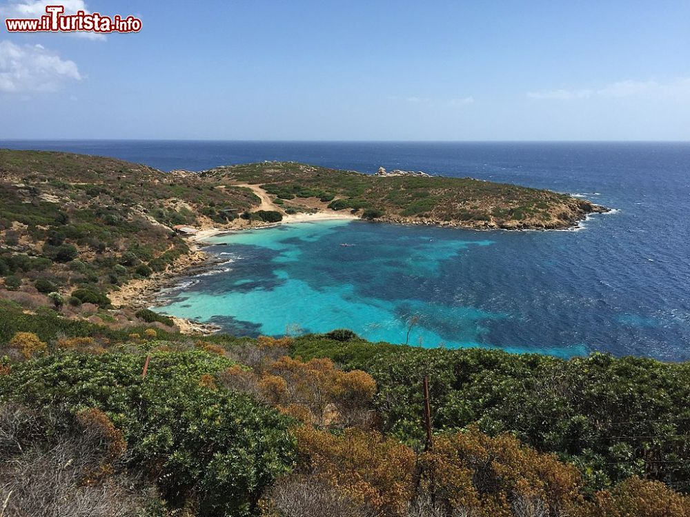Le foto di cosa vedere e visitare a Isola dell'Asinara