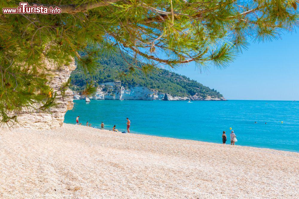 Cartina Puglia Zona Gargano.Le Spiagge Piu Belle Del Gargano Libere O Attrezzate