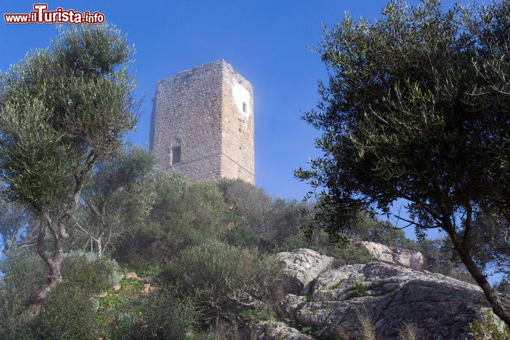 Le foto di cosa vedere e visitare a Casteldoria