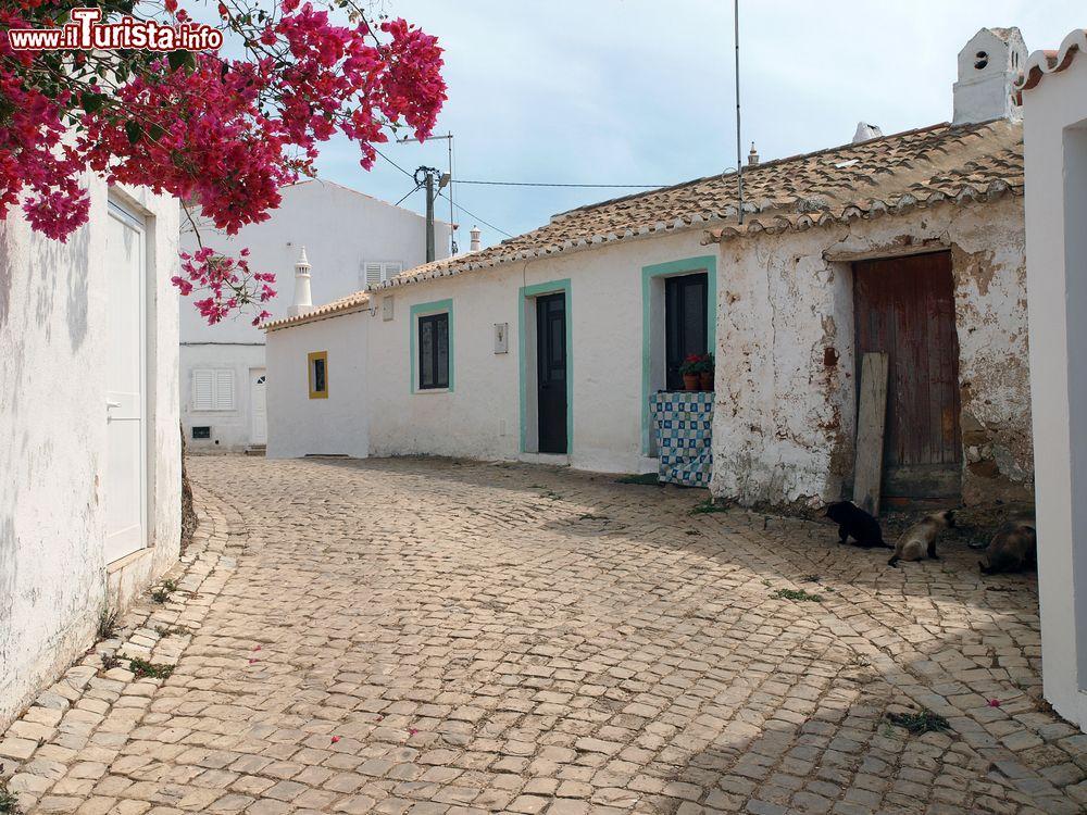 Le foto di cosa vedere e visitare a Vila do Bispo