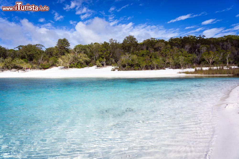 Le foto di cosa vedere e visitare a Fraser Island