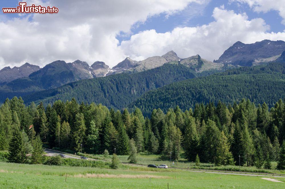 Le foto di cosa vedere e visitare a Bellamonte