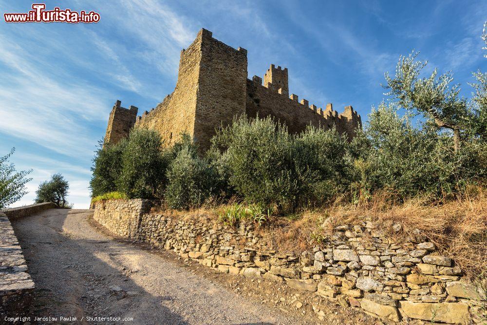 Le foto di cosa vedere e visitare a Castiglion Fiorentino