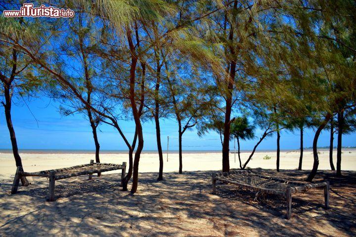 Le foto di cosa vedere e visitare a Malindi