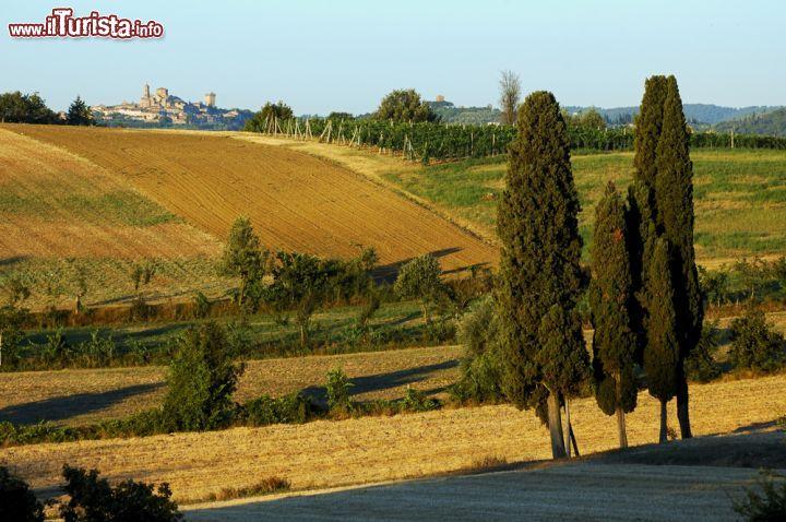 Il dolce paesaggio della Valdichiana e il borgo   Foto