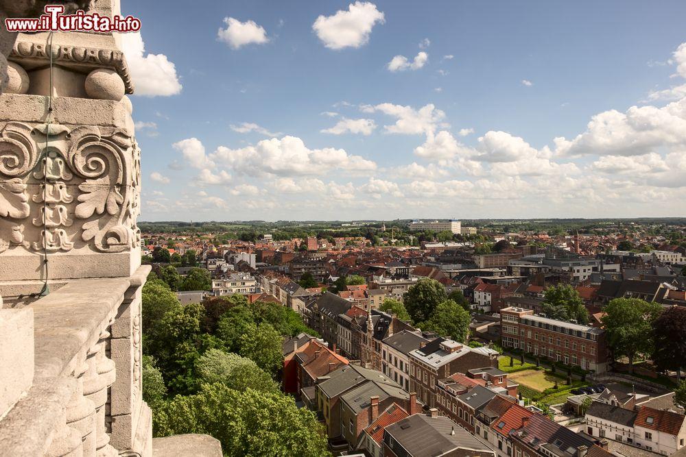 Le foto di cosa vedere e visitare a Leuven