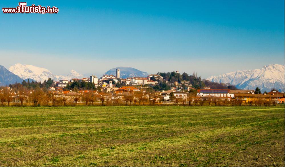 Le foto di cosa vedere e visitare a San Daniele del Friuli