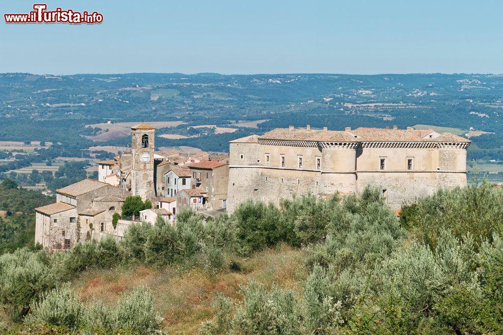 Le foto di cosa vedere e visitare a Alviano