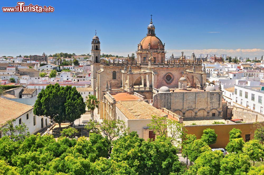 Le foto di cosa vedere e visitare a Jerez de la Frontera