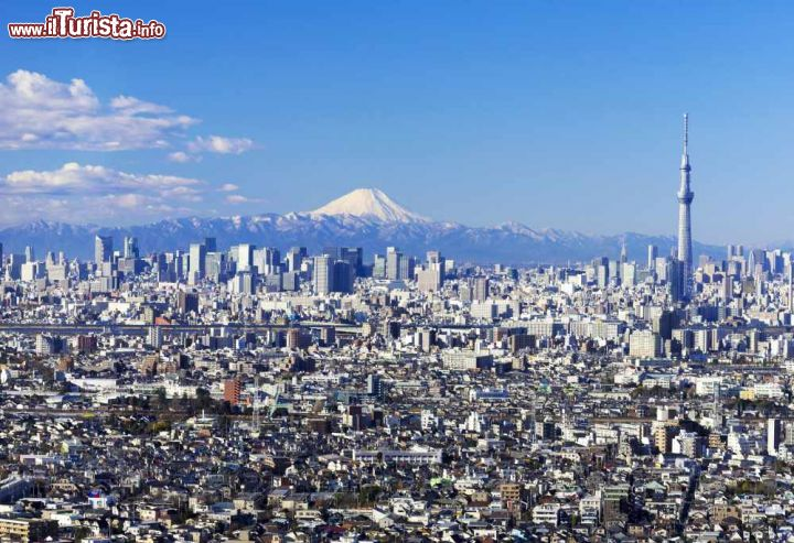 Le foto di cosa vedere e visitare a Tokyo