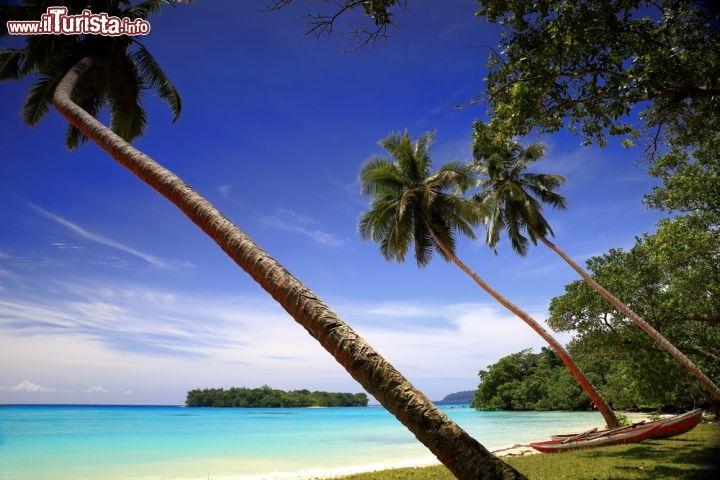 Le foto di cosa vedere e visitare a Vanuatu